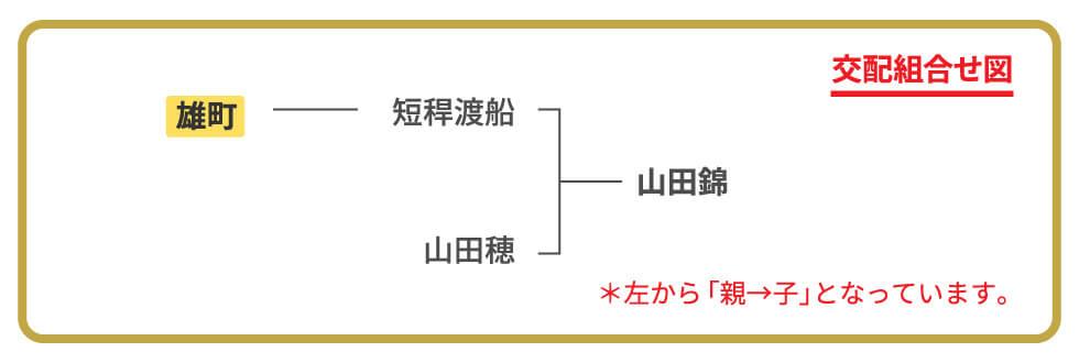 交配組み合わせ図